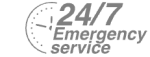 24/7 Emergency Service Pest Control in Ewell, Stoneleigh, KT17. Call Now! 020 8166 9746