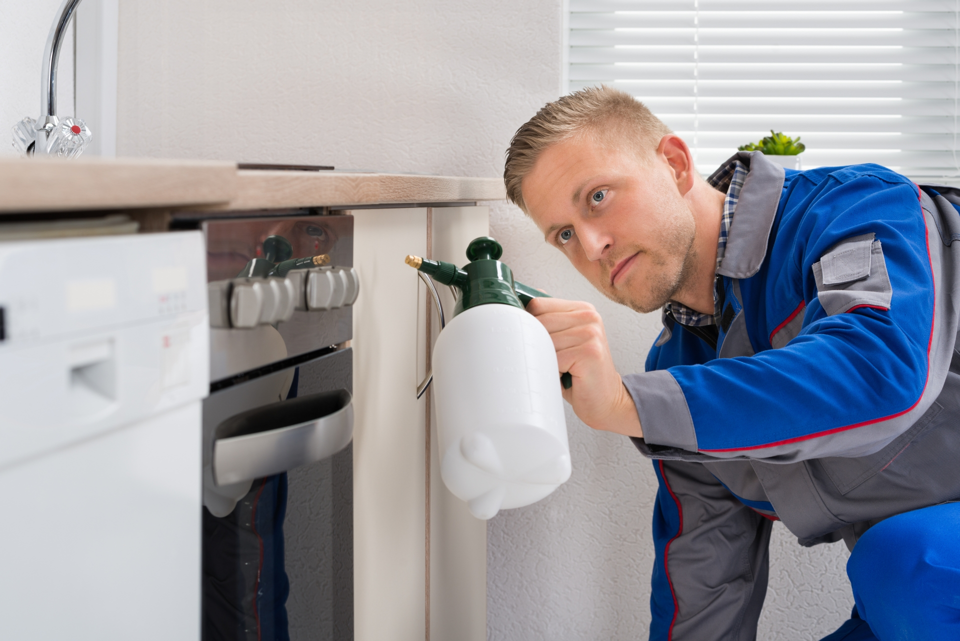 Pest Inspection, Pest Control in Ewell, Stoneleigh, KT17. Call Now 020 8166 9746